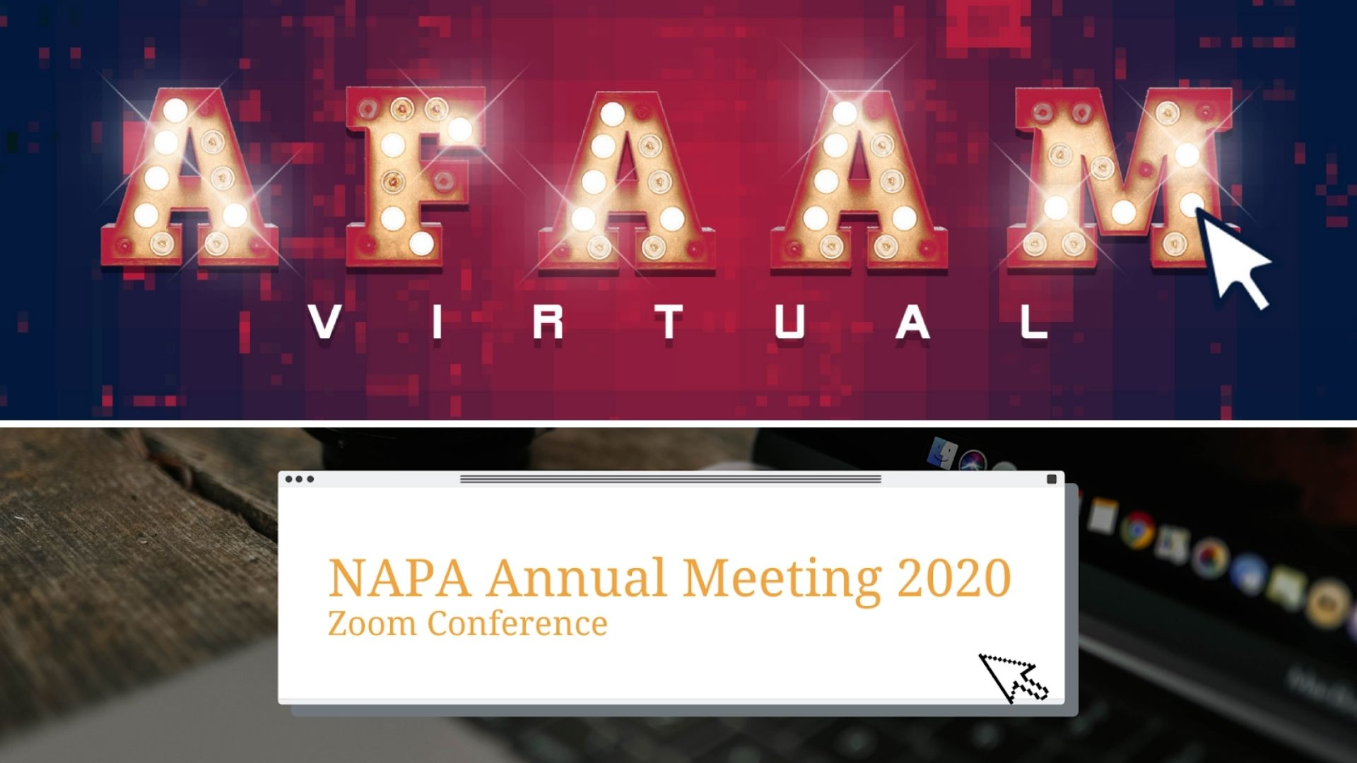 AFA Annual Meeting and NAPA Annual Meeting 2020